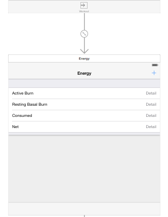 HealthKit app iOS8 by Santiapps.com